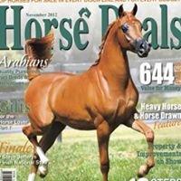Horse Deals Au