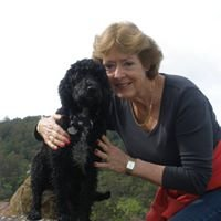 Kumalong Australia Dog Products and Training