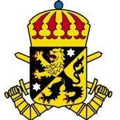 Skaraborgs regemente, P 4