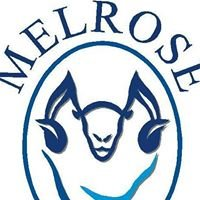 Melrose Merino Stud