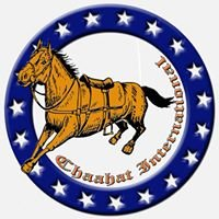 Chaahat Equestrian