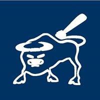 Bridgewater Bulls Baseball Club