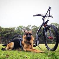 Dog Scootering and Mushing Australia