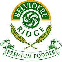 Belvidere Ridge Chaff