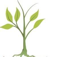 Bioactive Soil Solutions