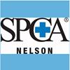 SPCA Nelson Centre
