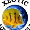 Xzotic Aquatic World Inc.