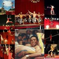 The South African National Circus School