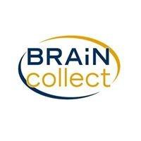 BRAiN collect GmbH
