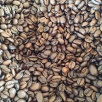 Holy Grounds Coffee Roasting