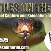 Reptiles on the Run