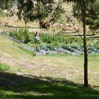 Basket Range Farm