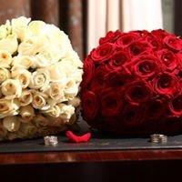 Amman Wedding