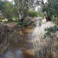 Mount Barker Wetlands