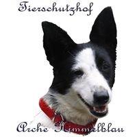 Arche Himmelblau