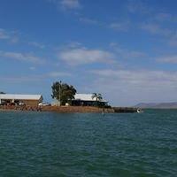 Port Augusta Yacht Club