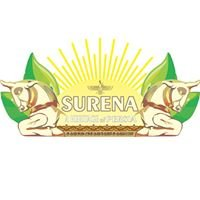 Surena Persian Business Hub