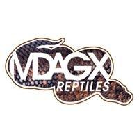 Mdagx • Reptiles