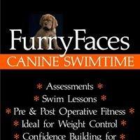 Furry Faces - Canine Swimtime