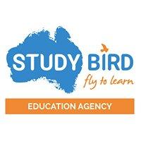 Studybird