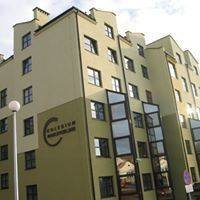 Kolegium Nauczycielskie w Bielsku-Białej