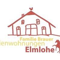 Ferienwohnungen Brauer in Elmlohe
