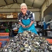 Jim Wild's Oysters