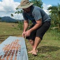 Teitei Homestay Fiji