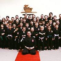 Rising Phoenix Martial Arts