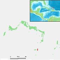 Ambergris Caye Island, San Pedro, Belize (Central America)