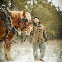 Mule Skinner Horse Logging