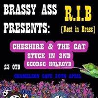 Brassy Ass