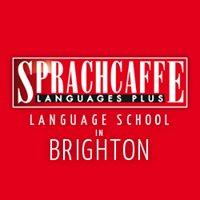 Sprachcaffe Languages PLUS - Brighton