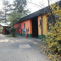 Kinder- und Jugendhaus Hallschlag