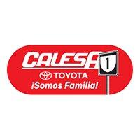 Calesa Toyota de Caguas