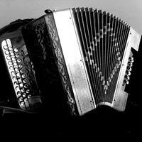 Escolas de concertina