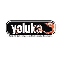 Fundación Yoluka