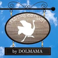 Flying Ostrich by Dolmama