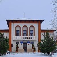 Primăria Orașului Panciu