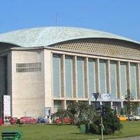 Concerte Sala Palatului Bucuresti