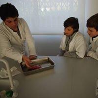 Cantinho da Ciência - Escola Secundária Ibn Mucana