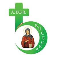 "Asociația ""Tineretul Ortodox Român"" - Filiala Bucecea"
