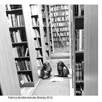 Biblioteca Judeteana Bistrita-Nasaud