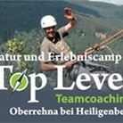 Top-Level Teamcoaching