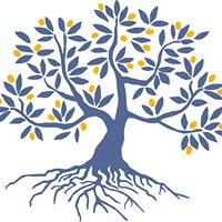 GU Olive Tree Initiative