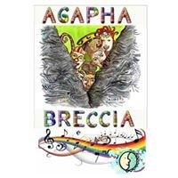 Agapha&Breccia