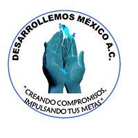 Fundacion Desarrollemos México A. C.
