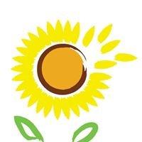 Udruženje građana Suncokret - Omoljica