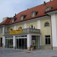 Kulturni Dom Cerknica