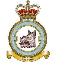 501 Squadron RAF Reserves